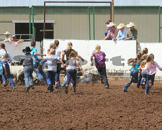 2014 Klickitat County Fair & Rodeo Sheep Dressing