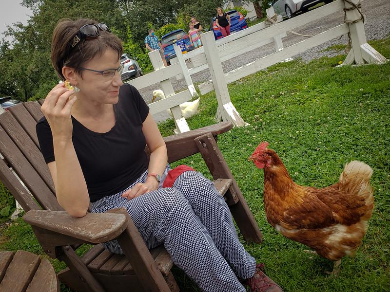 Chick Fight at Confiturerie Tigidou!