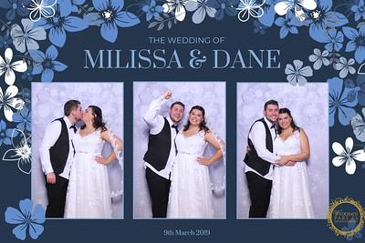 Milissa + Dane