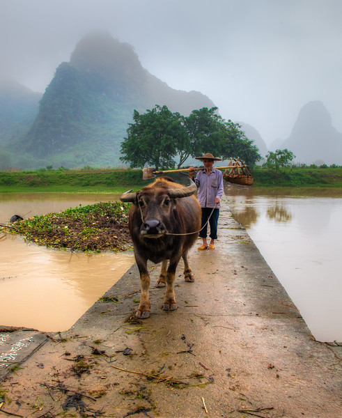 2012 china fisherman & old man w- cow-2.jpg