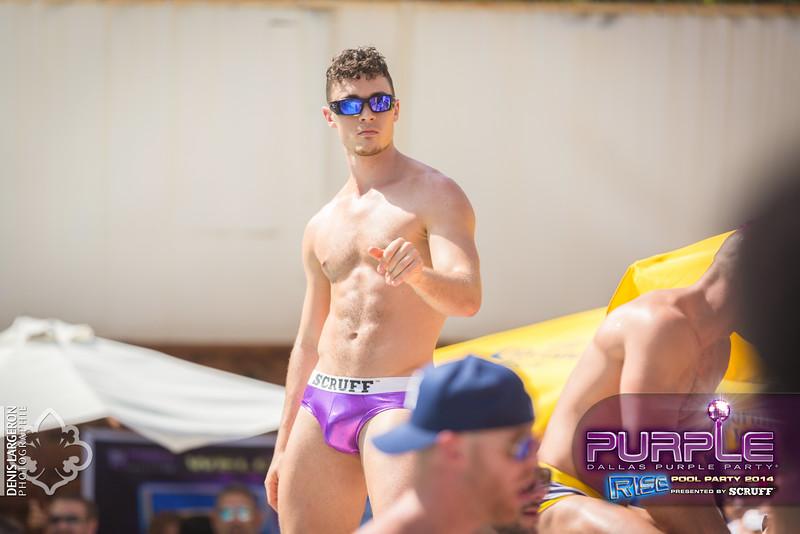 2014-05-10_purple06_438-3255125972-O.jpg