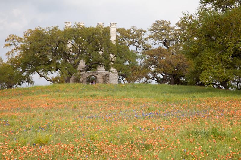 2015_4_3 Texas Wildflowers-8086.jpg