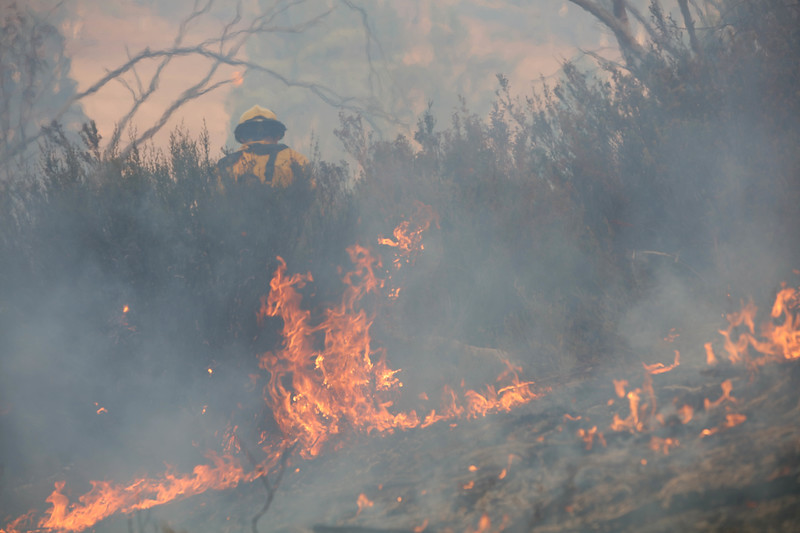 11. Australia Bushfires_11.JPG