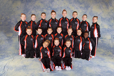 Team 2014 - Girls JO Level 4