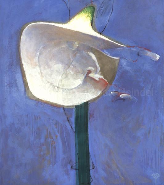 The White Skirt V (1991)