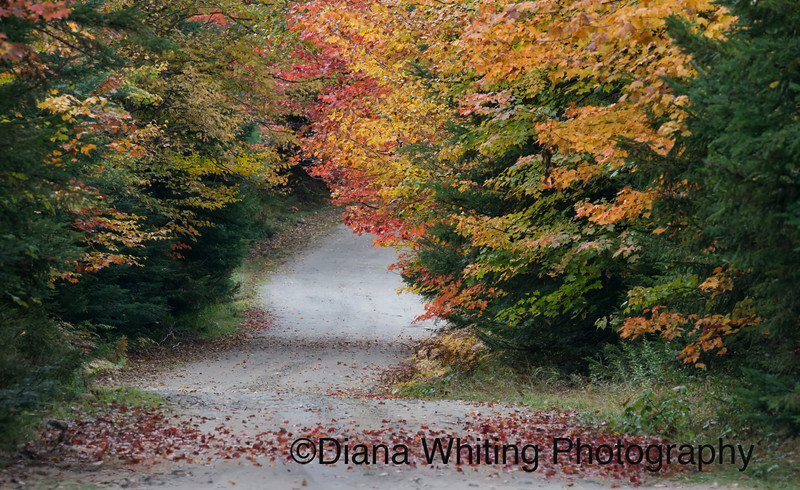 Adirondack Back Roads in the Fall