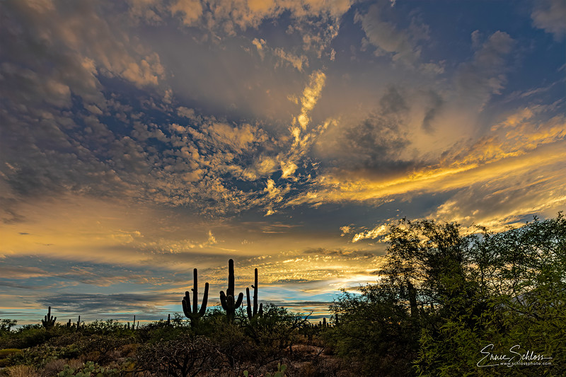 Sabino Sunset 1 2019 SD Version-.jpg