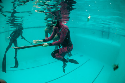 Spearfishing Fii