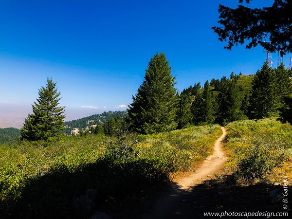 Bogus Basin Recreation Area