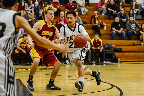 2013-2014 HS Basketball
