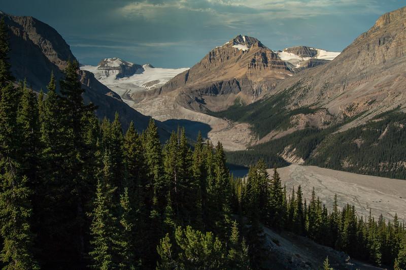 Looking up Bow Glacier