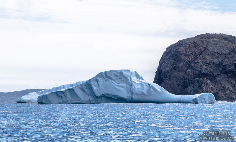 Iceberg 18   Photography by Wayne Heim