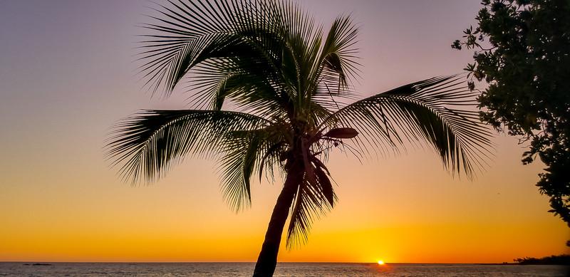 Kona Paradise,