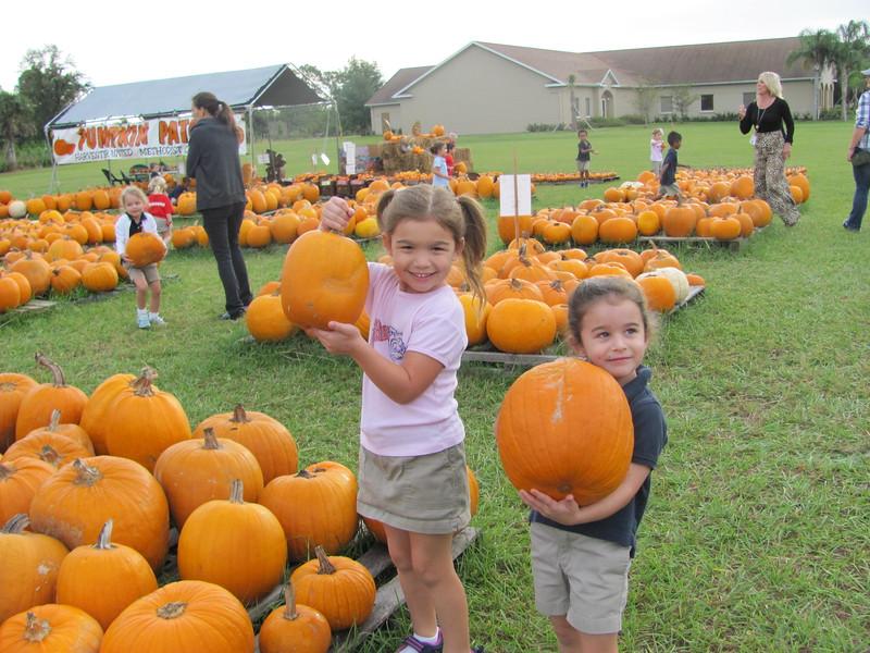 Pumpkin Patch 2015 002.jpeg