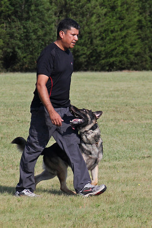 DFW Training Summer 2011
