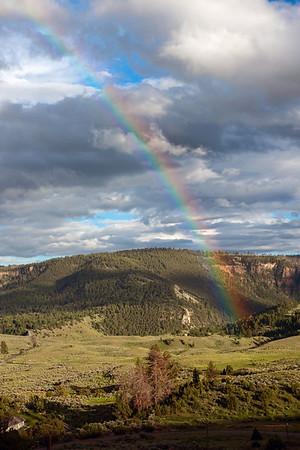 Yellowstone, Grand Teton NP 2013