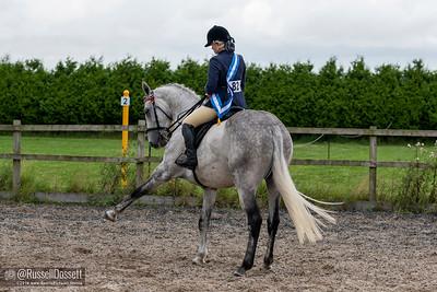 11-08-19 horse event