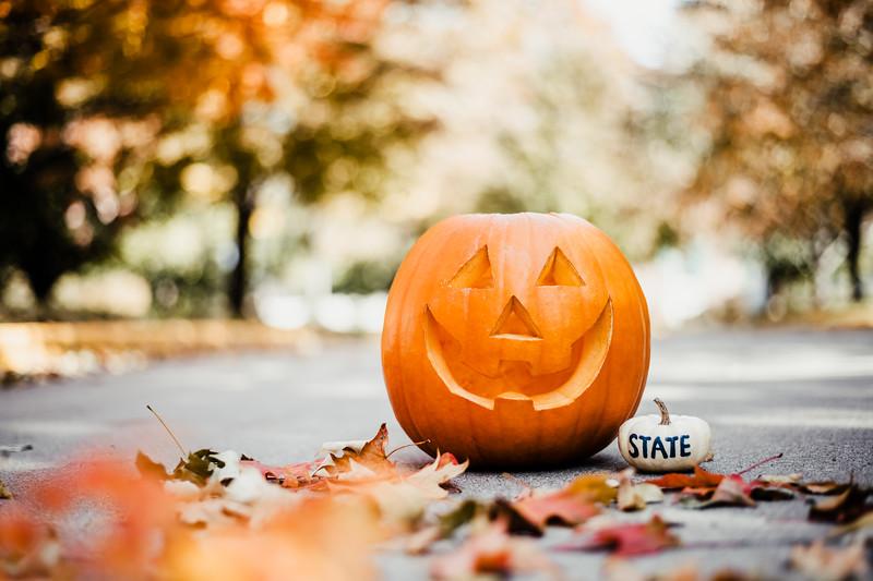 October 25, 2018 Halloween DSC_5678.jpg