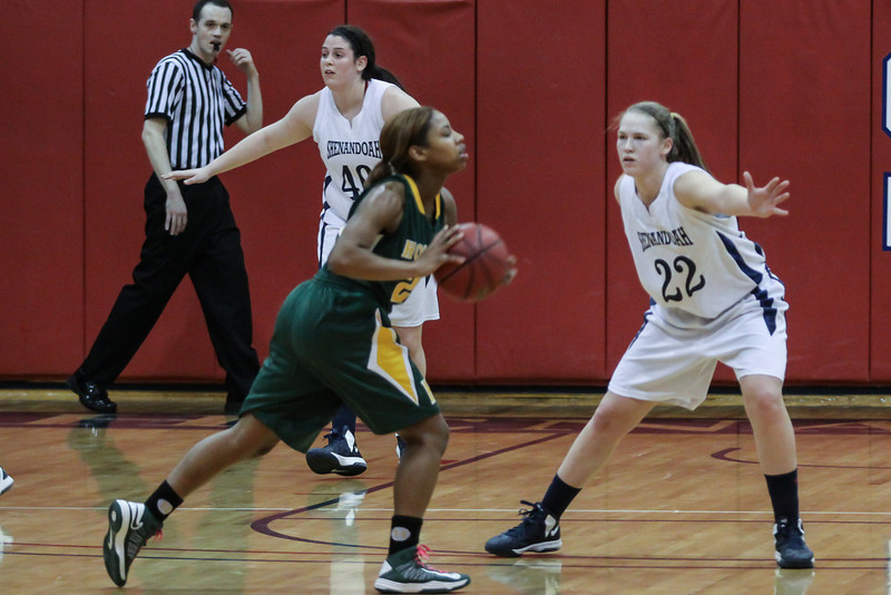 20130218_WBB_Hollins_at_SU_HJP_0107.jpg