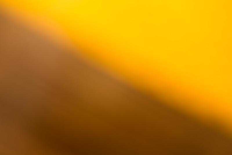 Colour Washes BH5A7011.jpg