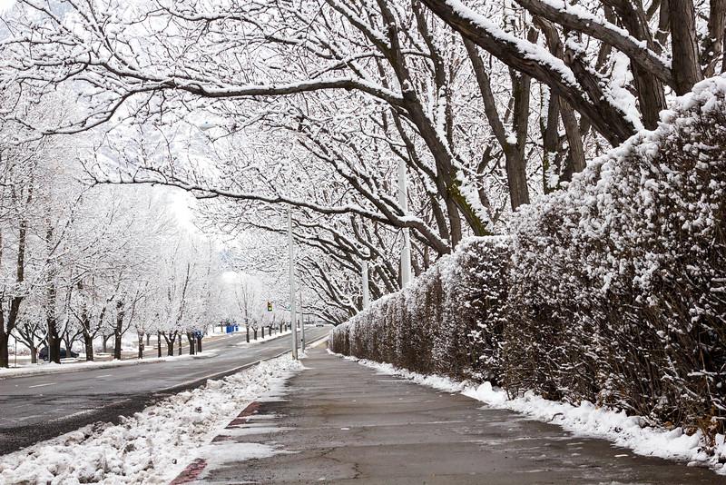 2016_01_31_Winter_Scenery_9999_26.jpg