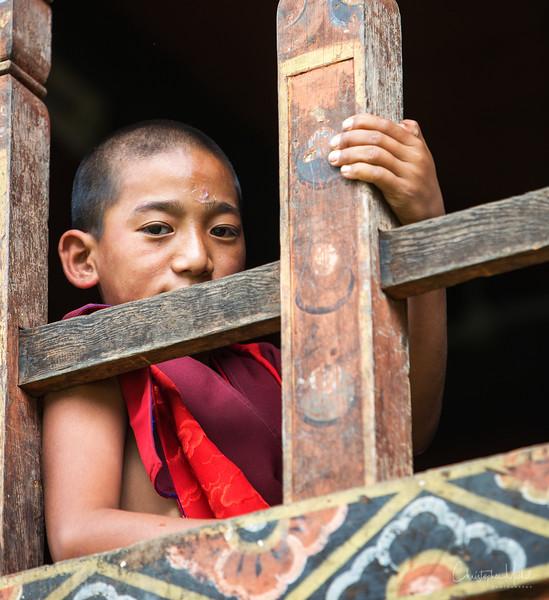 punakha-dzong_chorten-nebu_20120917_8902.jpg