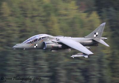 Harrier T.10 / T.12