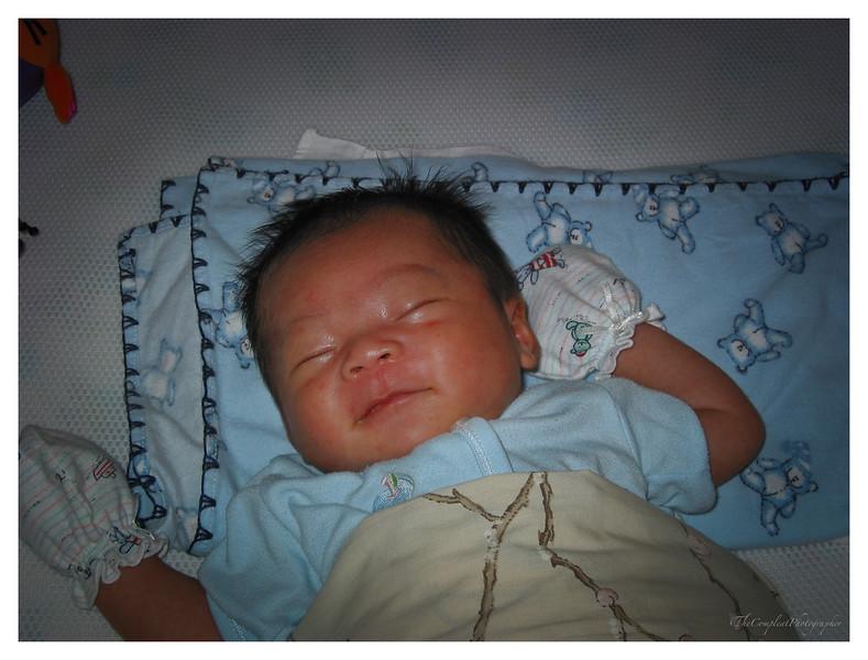 Beannie's one month old 001.jpg
