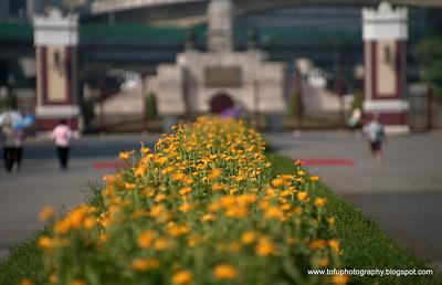 Bangkok favourites Pt 2 -  2009