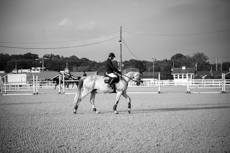 Devon Horse Show Rider.jpg