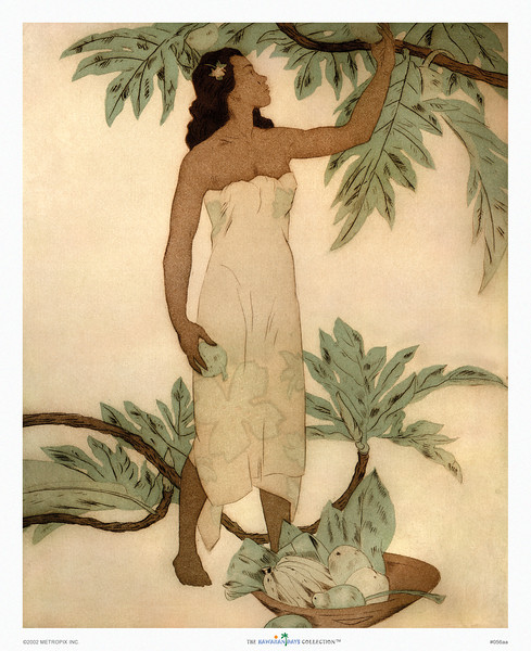 056: John Kelly: 'Breadfruit' Ca. 1945