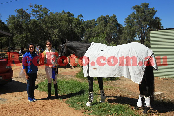 2017 03 25 Zamia Summer Series Dressage 3 Presentations and Around the Grounds