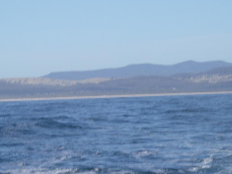 Sydney trip and Mirimbula 041.JPG