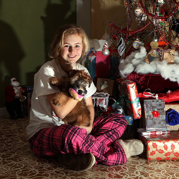 Haili_Olive-Christmas-001.jpg