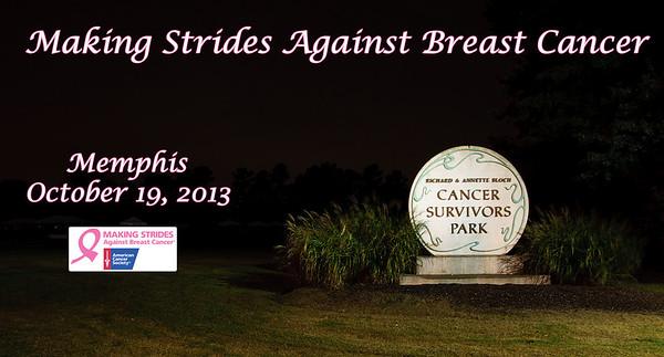 Making Strides Memphis 10/19/13