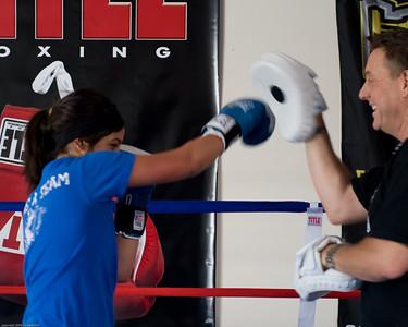 Hybrid Fighting Sports
