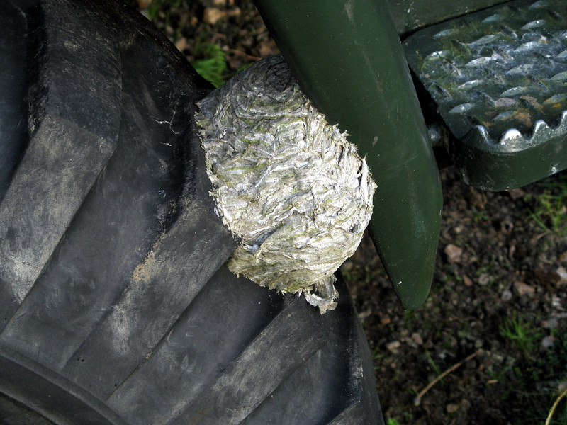This huge army van had been here long enough for hornets or something to make a nest.  Luckily, it was deserted.
