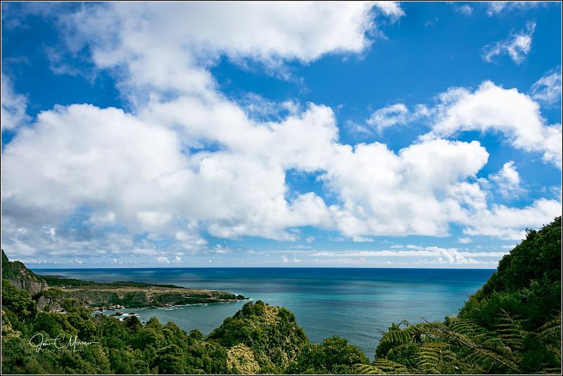 JM8_2840 Ocean View LPN W.jpg
