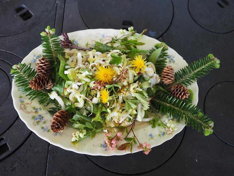 CR_Salade sauvage à la Sonia.JPG
