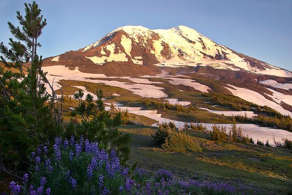 Mt. Adams Meadow Hike