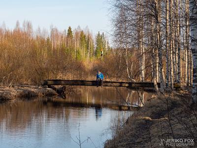 Alajoki Trail 2020