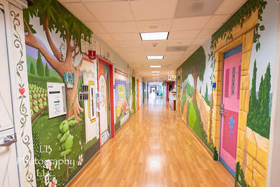 Texas Health Plano Pediatric Art