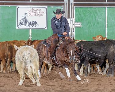 Mike Wood Performance Horses
