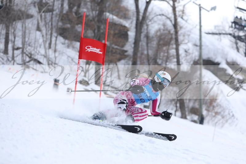 Chestnut Ski Race Saturday Feb 20th Girls