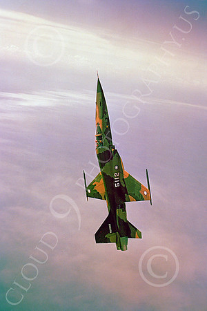 Flying Taiwanese Air Force Northrop F-5 Freedom Fighter Airplane Pictures