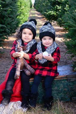Bri's Mini Christmas Photos