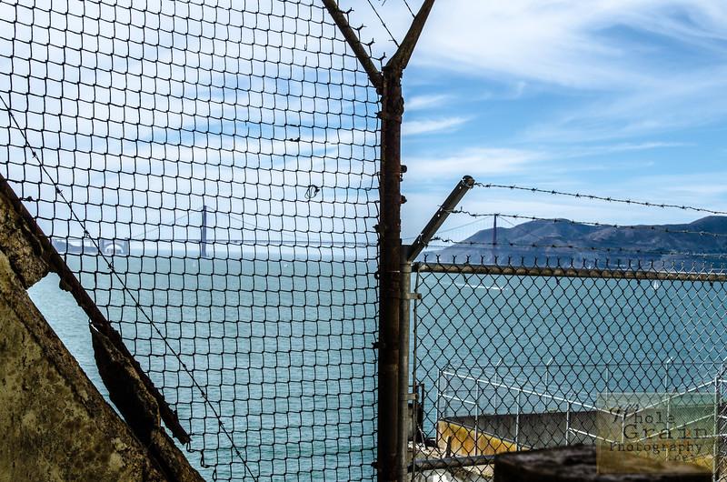 20141016_Alcatraz_0113.jpg