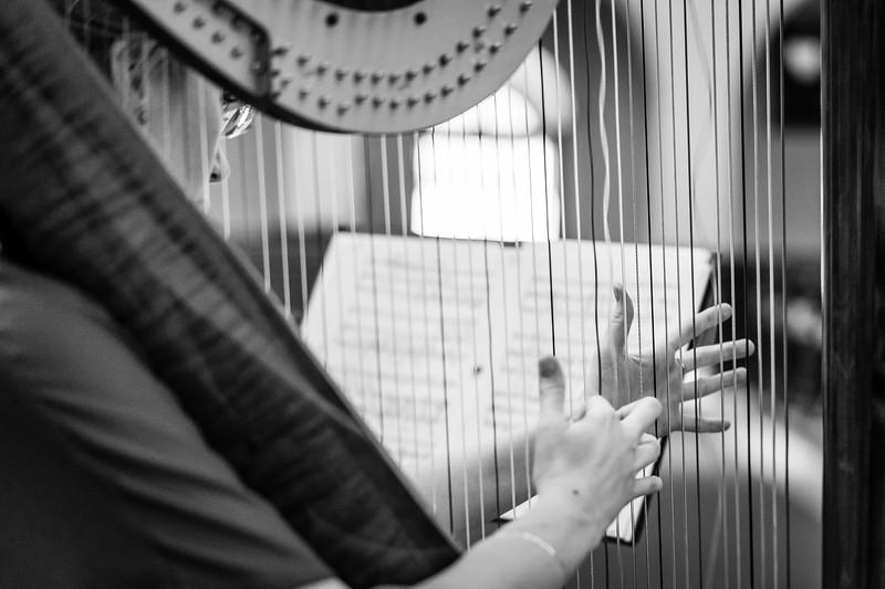 Dialog flétny a harfy