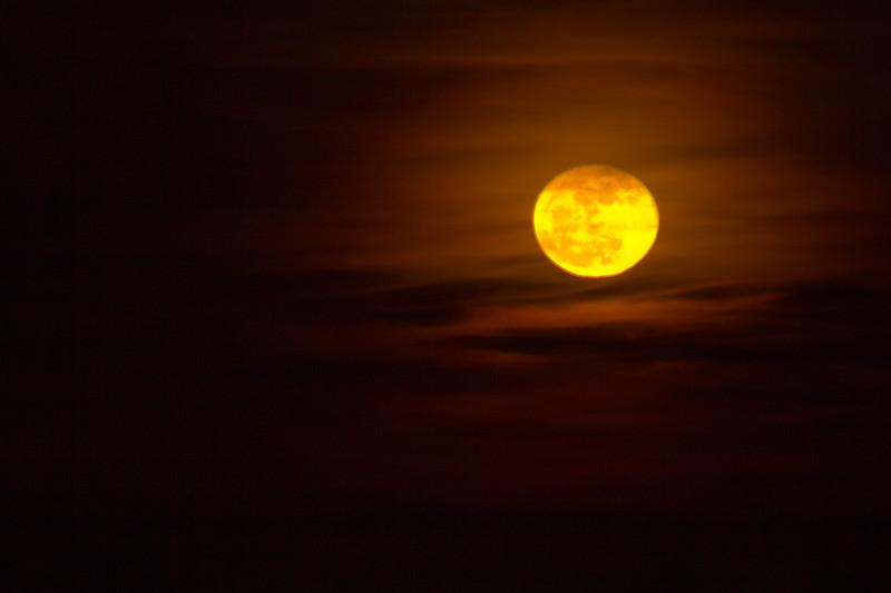 131218, Gold Moon - LPF.jpg