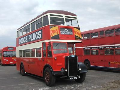 Bus Rallies